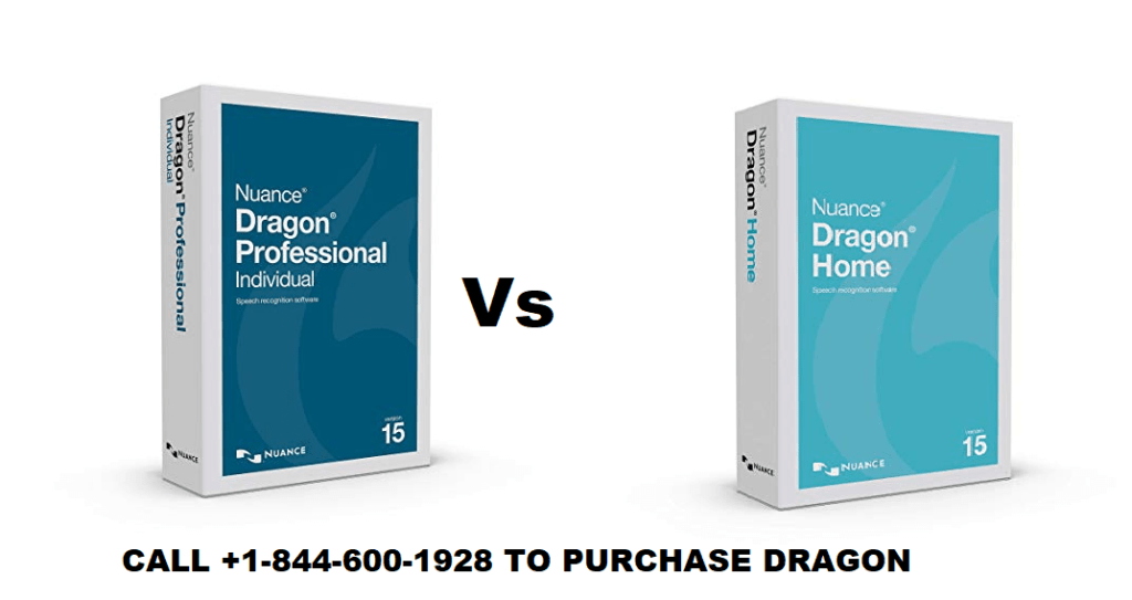 dragon 15 home vs professional